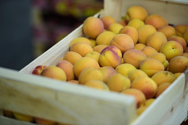 tharros-fruit-prodotti-04