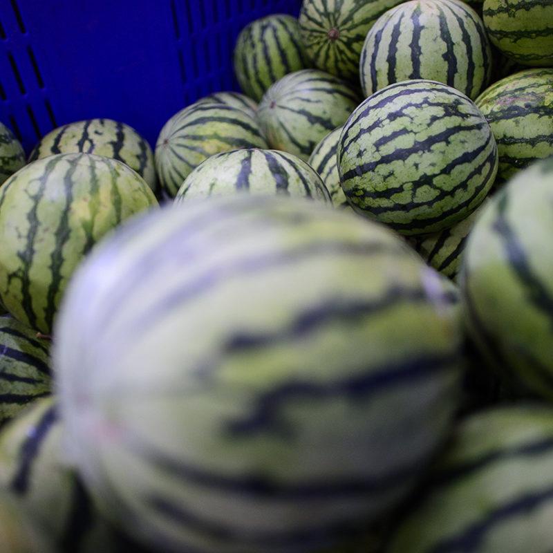 tharrosfruit-DSC_9198