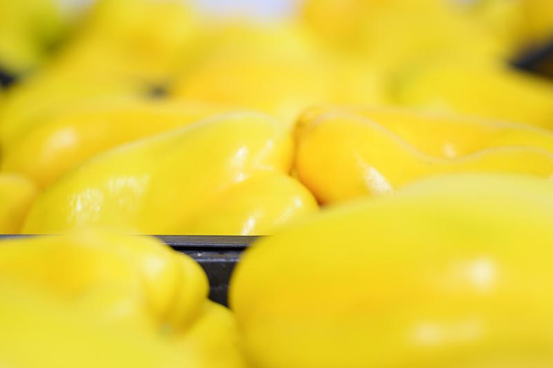 tharros-fruit-prodotti-07