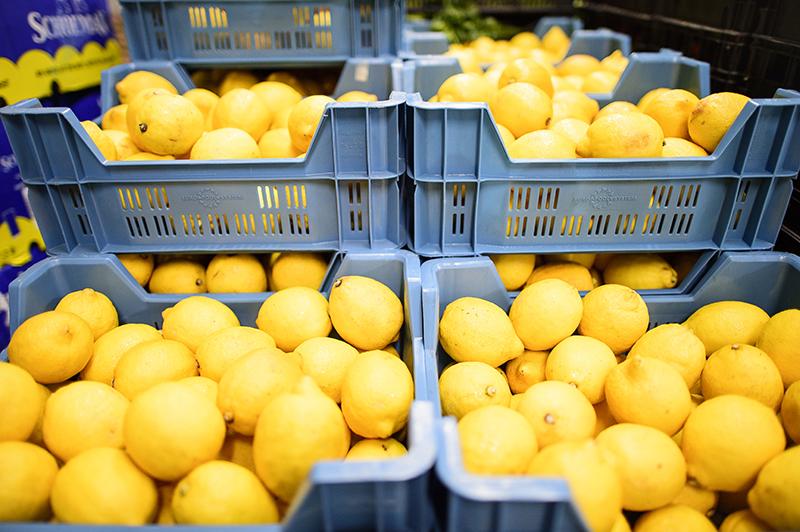 tharros-fruit-prodotti-11